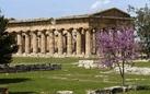 Wiki Loves Monuments al Parco Archeologico di Paestum