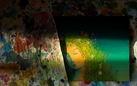 Inseguendo Donnafugata. Le illustrazioni di Stefano Vitale, il vino e la Sicilia