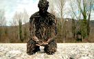 Alessandra Aita. Wood Sculptures