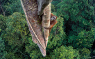 Wildlife Photographer of the Year. 52a edizione