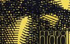 Mario Nigro. Gli spazi del colore